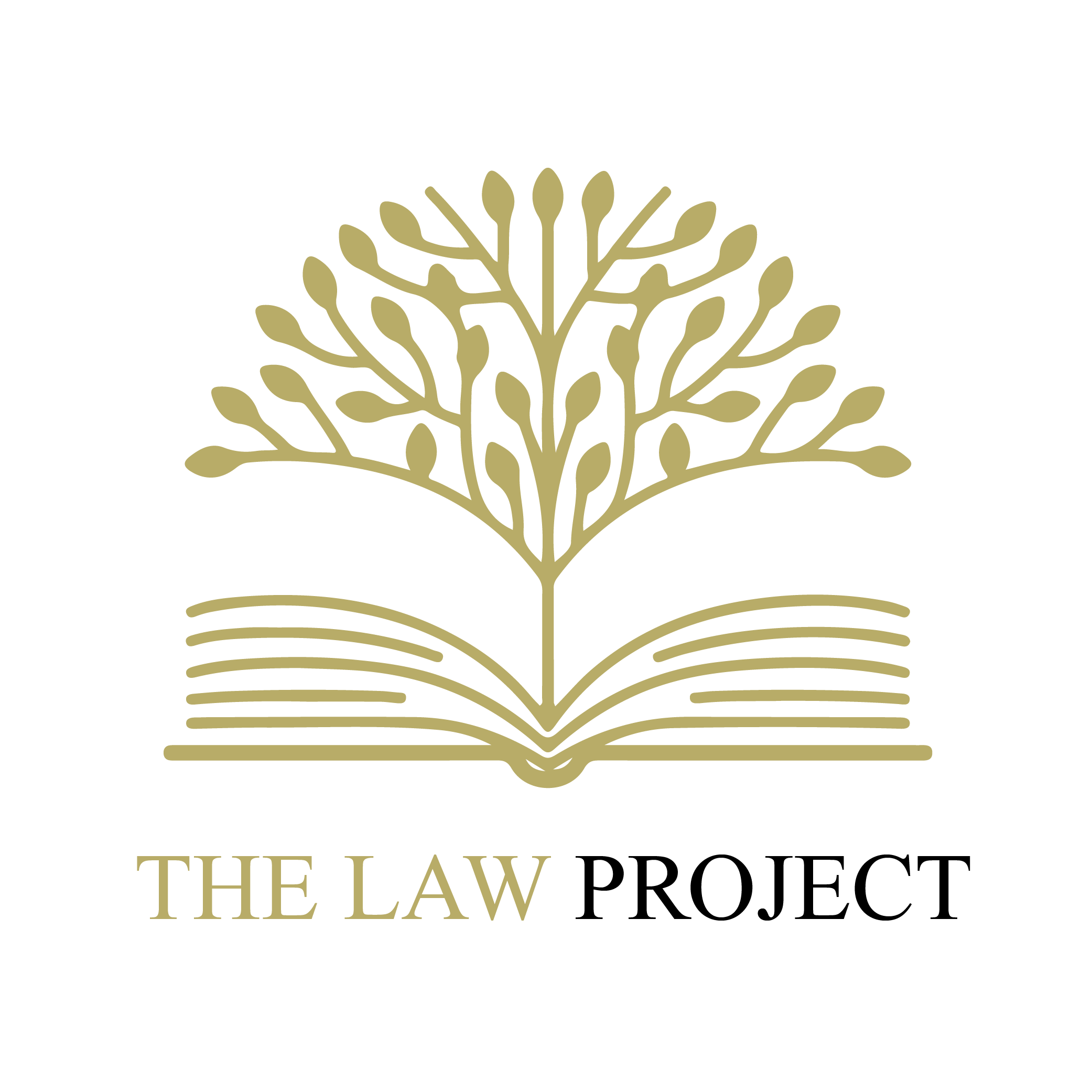 The Law Project - Logo.png