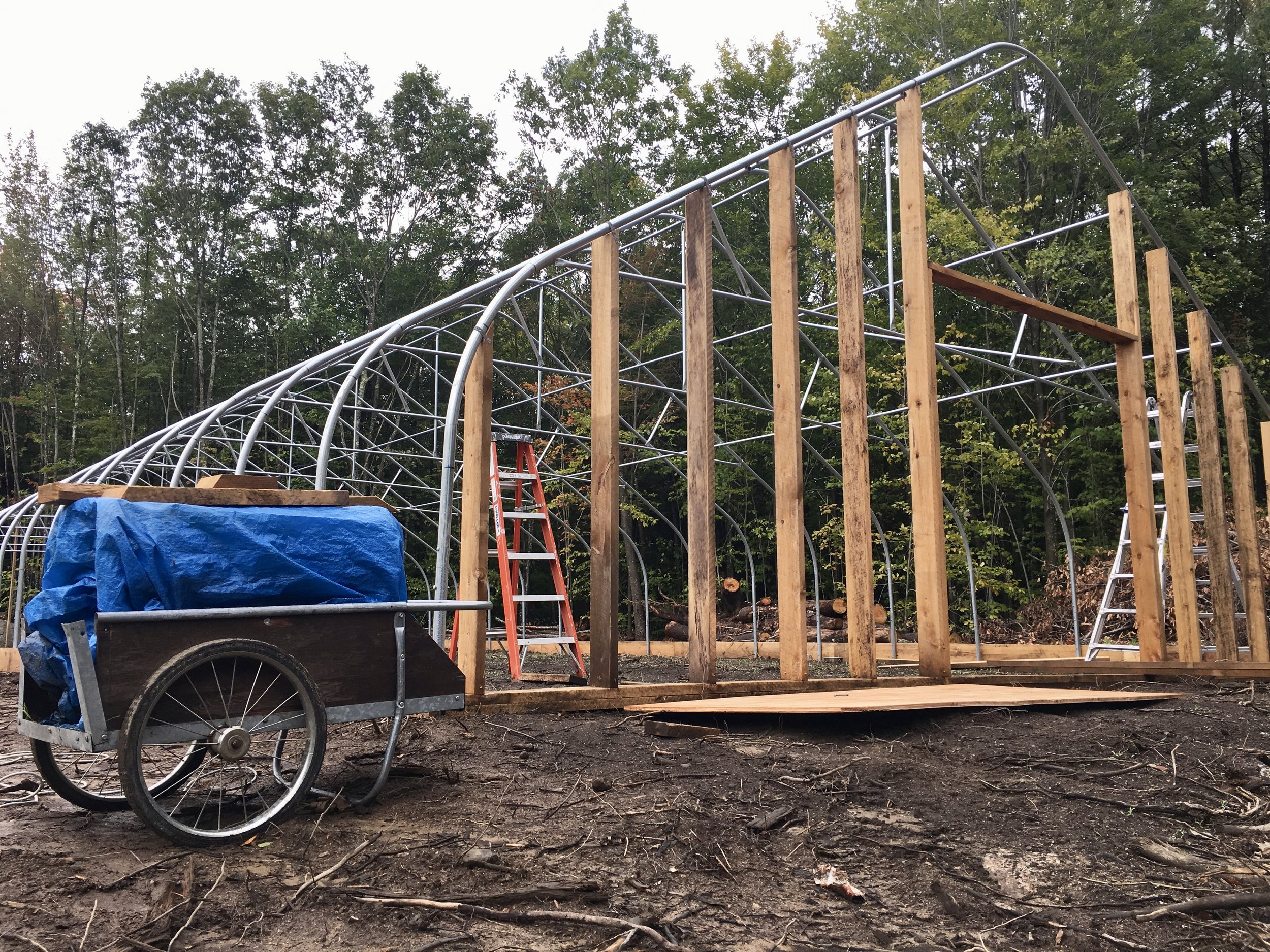 Building the greenhouse…
