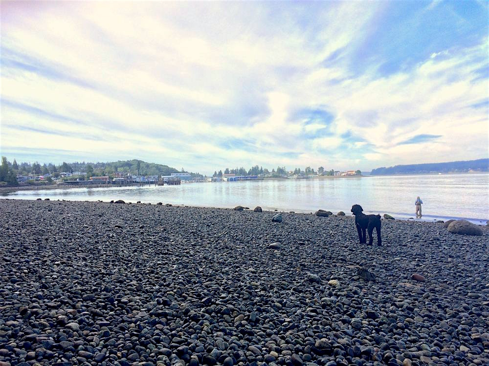 Titlow Beach Park is a lovely place to dine and take a walk on the water. Beachside restaurants include Steamer's seafood and the Beach Tavern.