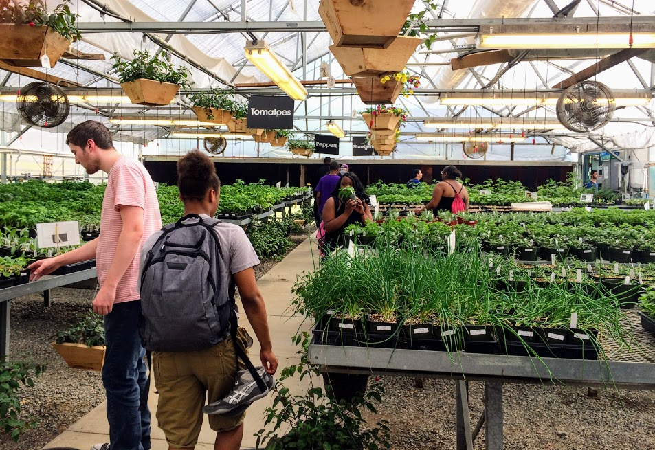 Plant Biology students heading out of the greenhouse for home.