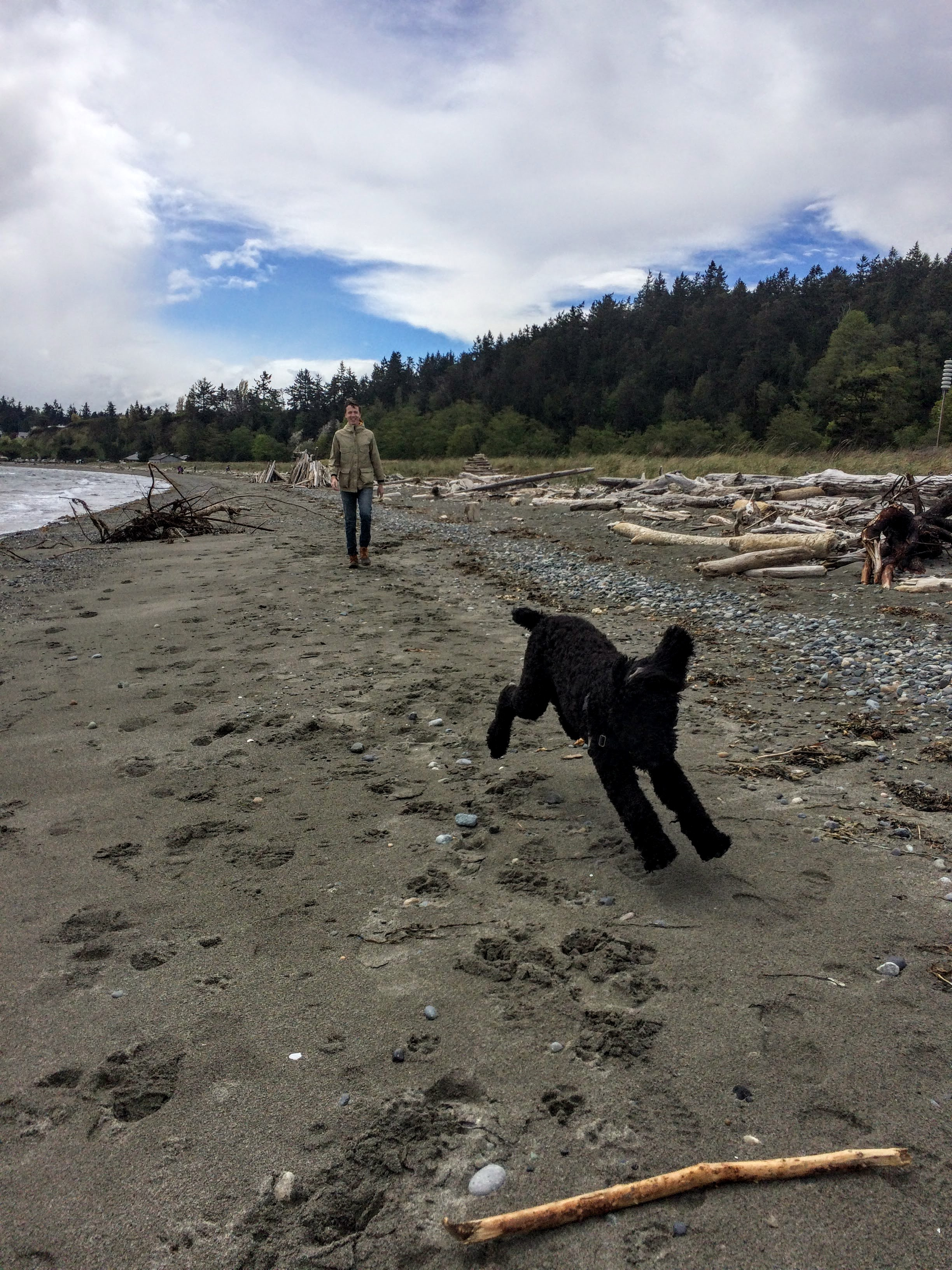 Fetch on the sandy beach at Fort Worden. One of our favorite places!