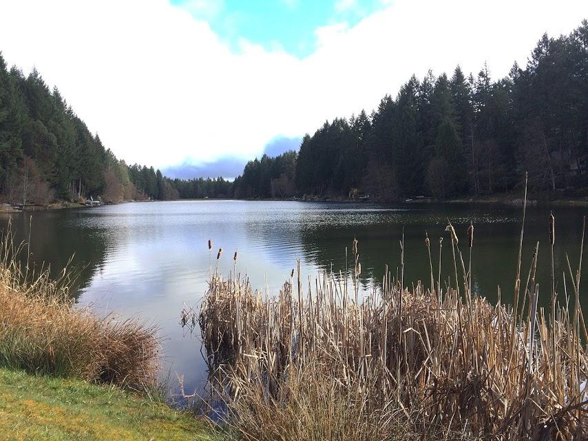 Lake Minterwood