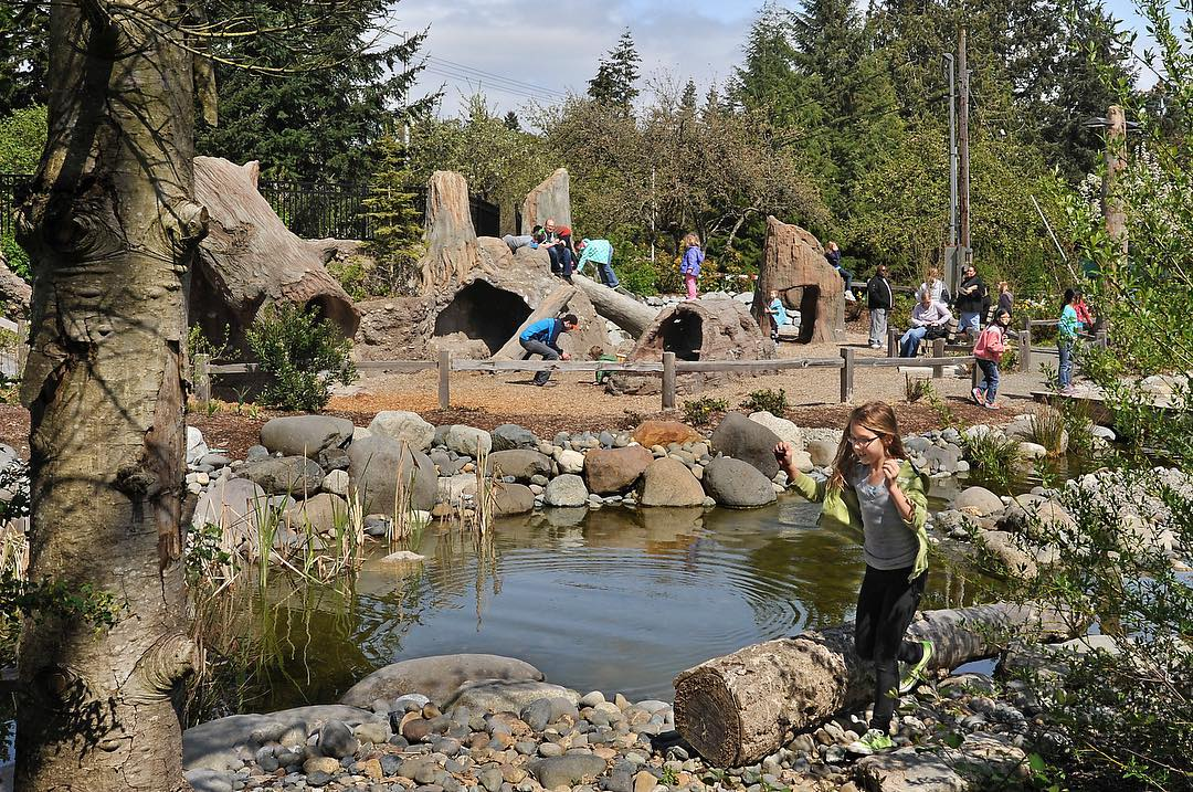 Image from    Metro Parks Tacoma  . Sunshine fun at Tacoma Nature Center's playground, less than a mile away!