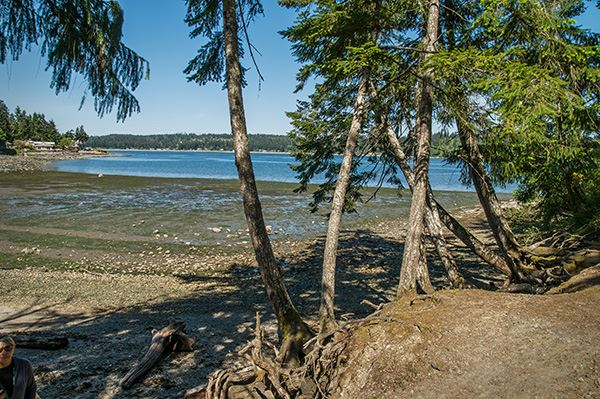 Image from    Washington State Parks    -  A glimpse of the beach at Manchester State Park, just 7 miles from home.