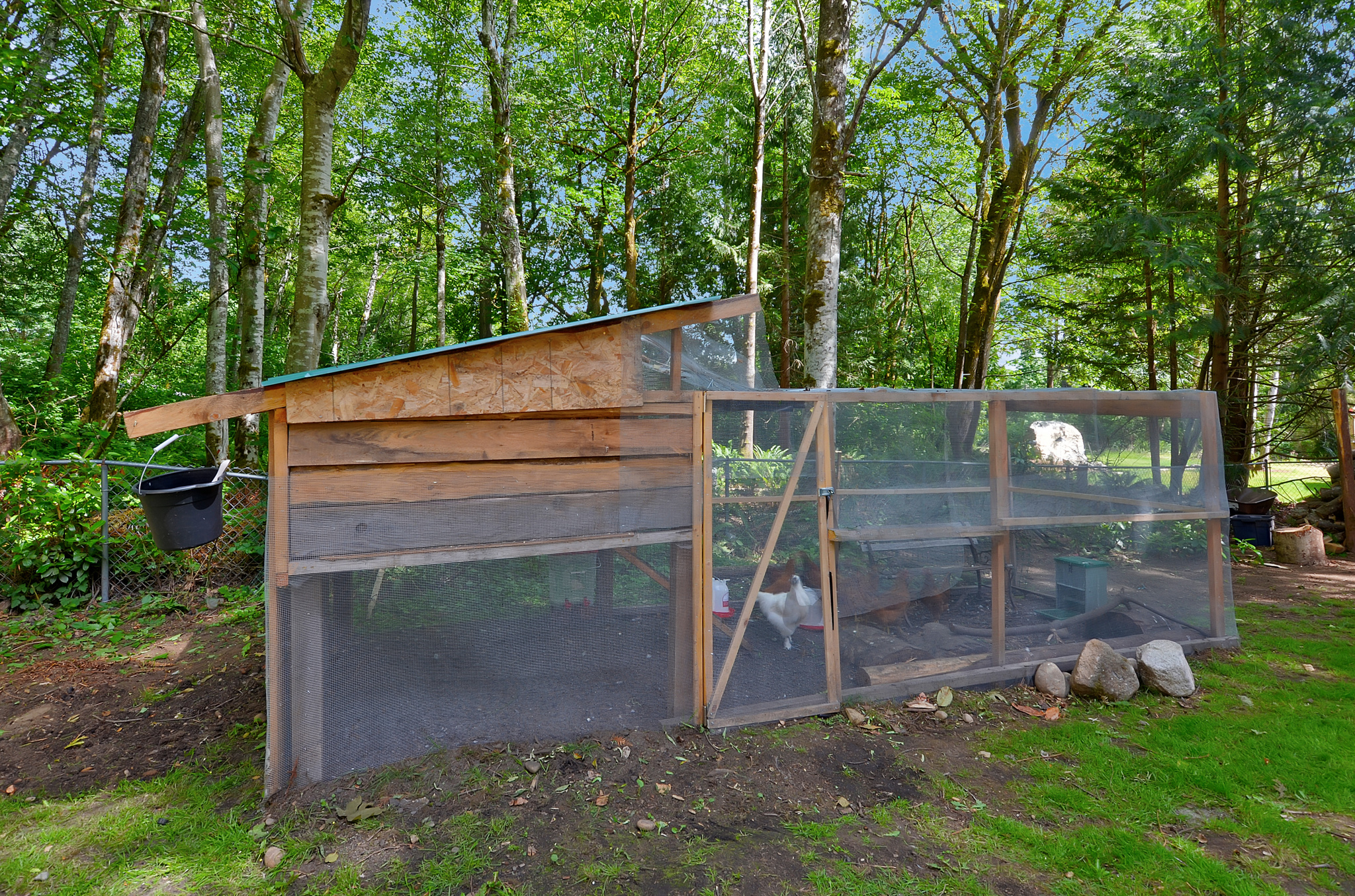 There's even room for a chicken coop back here! If you have pets, there's definitely space for them on this 0.75 acre lot.