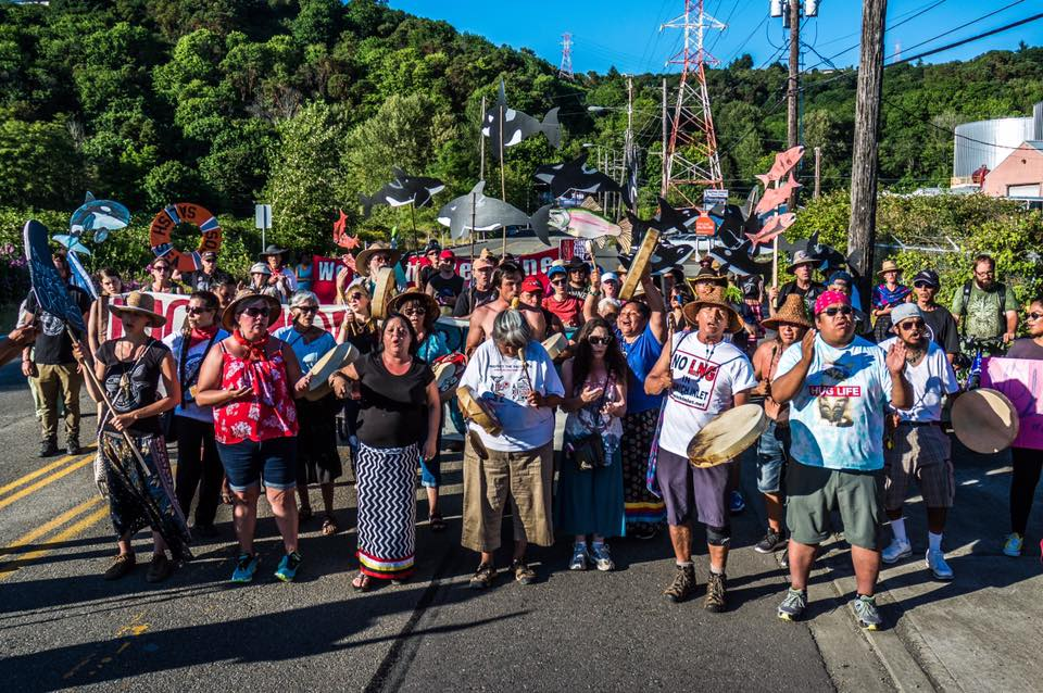 Image from   Protectors of the Salish Sea