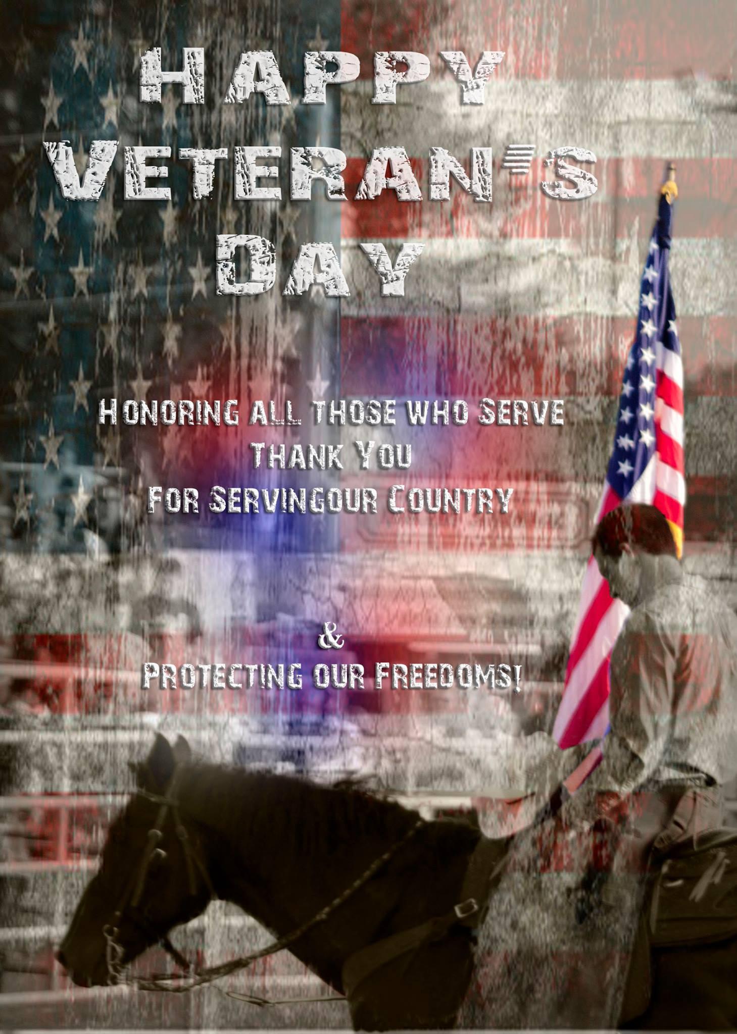A Veteran's Day social media post image.
