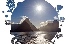 InterCity Milford Sounds  - From $125 Per Person