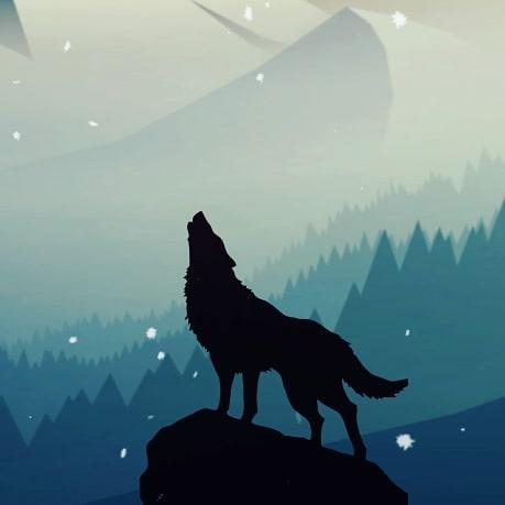 """Welcome to Be True Winter."""" __________________________  #betruecineworks #betruewinter #betrue #cinema #betruecinema #vancity #dailyhivevan #vancouver #visualsoflife #gameoftones #behindthescenes #filmmakers #bcfilm #film #cine #sonyalpha #sony #fuji #aputure #aputuretech"""