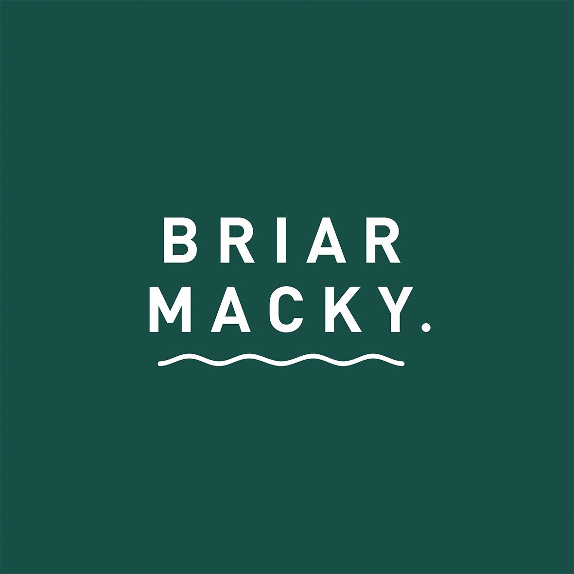 Briar logo.jpg