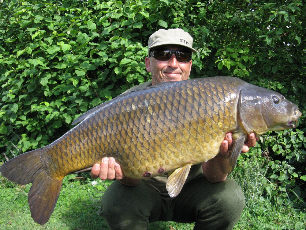 28lb Hardwick Smith's common