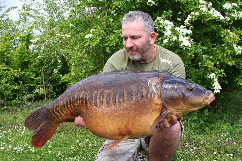 Kempy's Linear is a Manor stunner