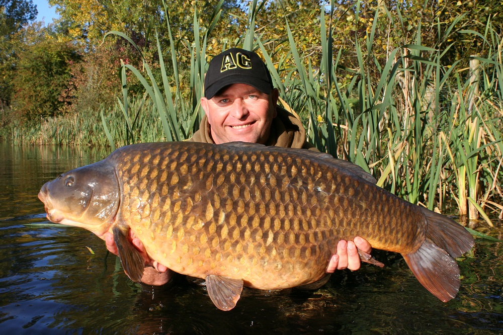 The 40lb+ Box Common