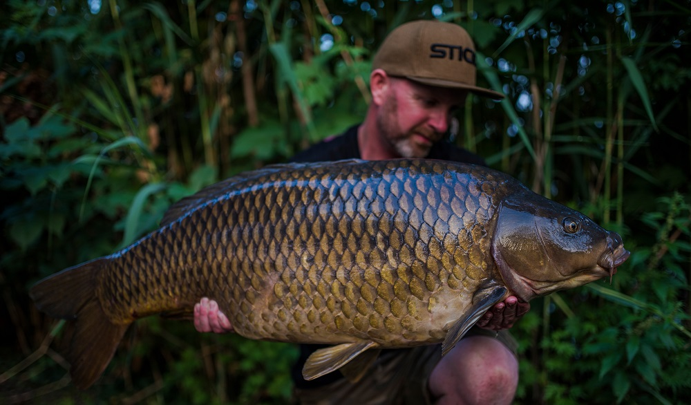 Another stunning common at 47lb 8oz