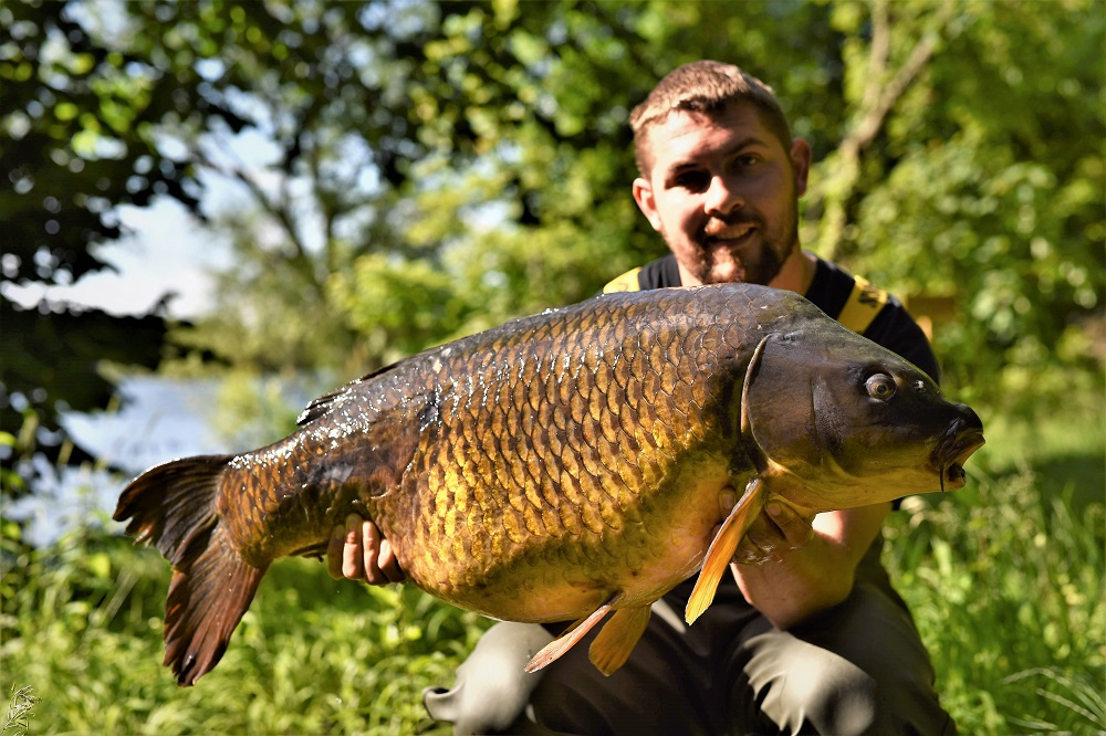 The Swirly Tail Common at 33lb 2oz