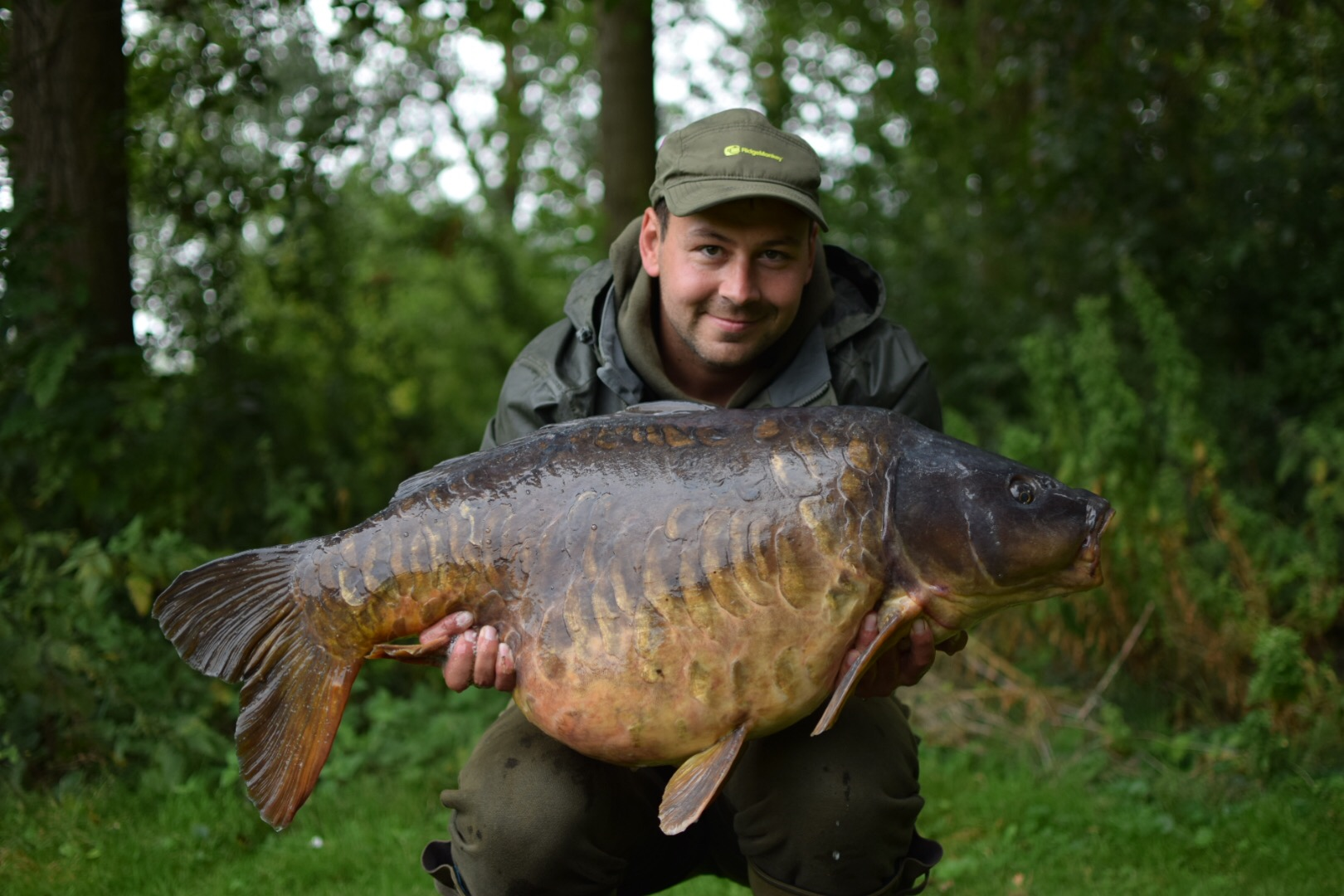 The Small Plated at 41lb 12oz