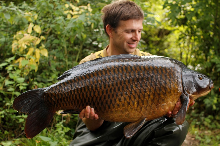 The star of the show was this 38lb common, uncaught in four years