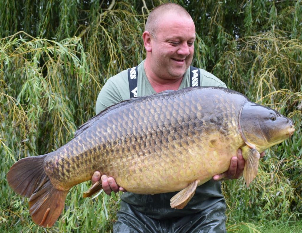 41lb 8oz of Bluebell common