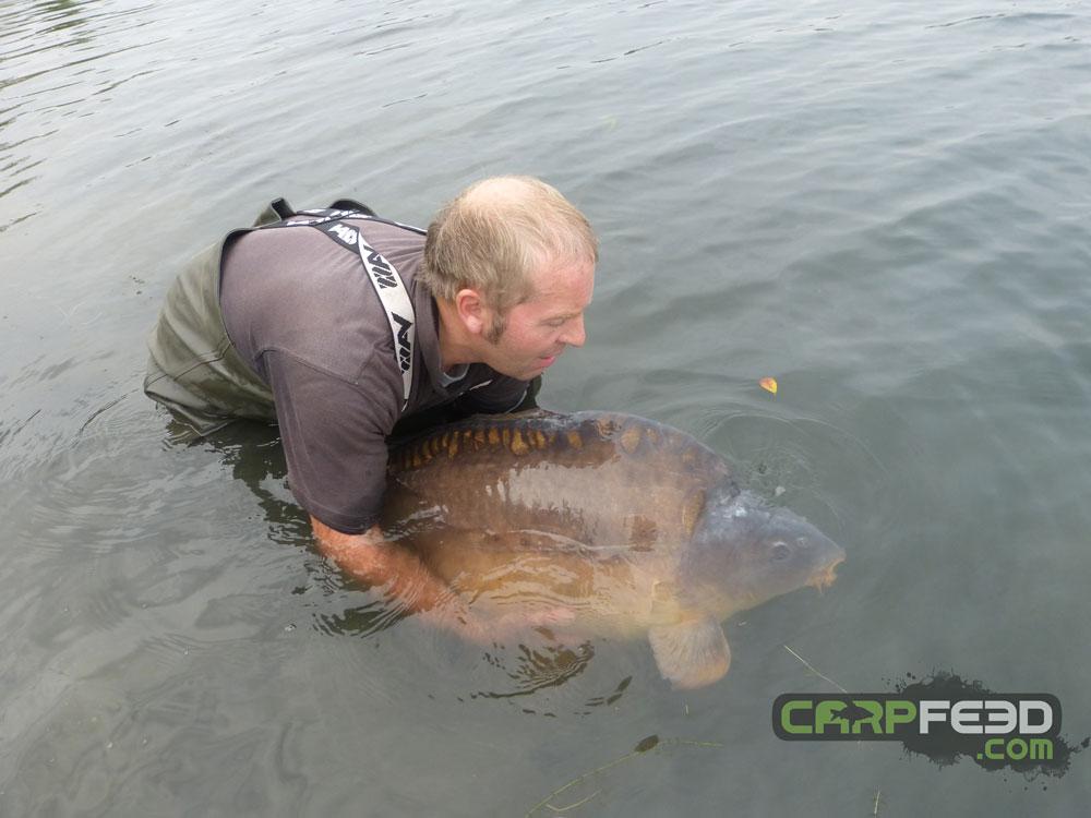 This shot demonstrates the fish's sheer bulk