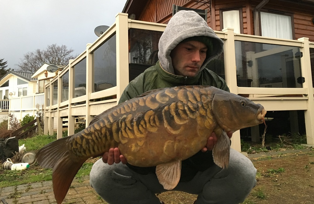A scaly beaut in non-traditional surroundings
