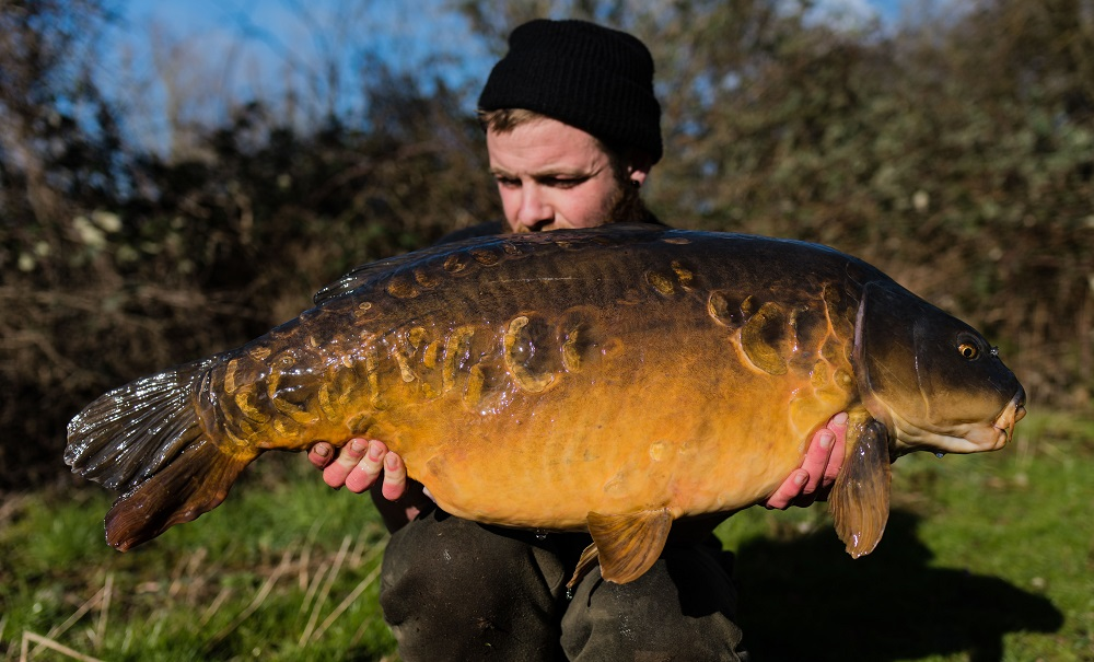The biggest of the session went 40lb 15oz