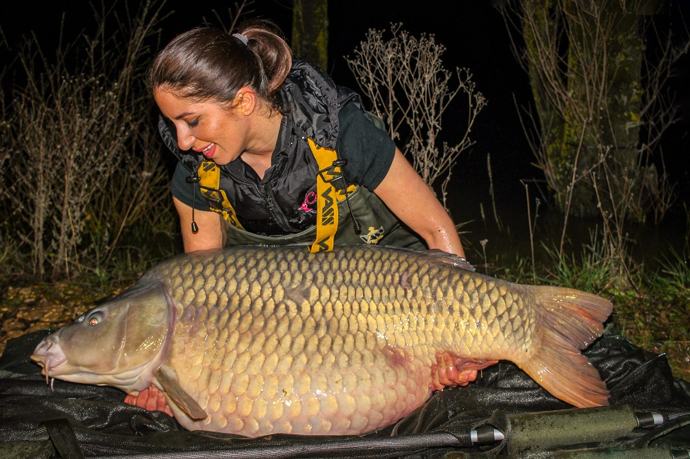 66lb 5oz of French common for Arezue
