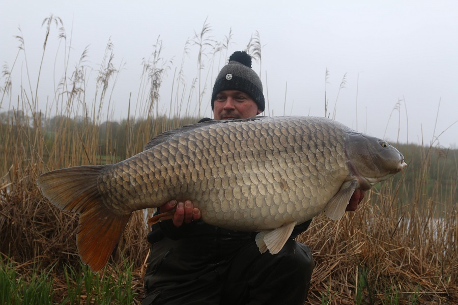 The second big common went 40lb