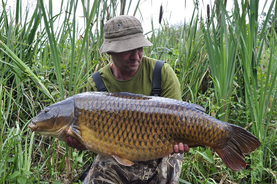 A cracker of a fish at exactly 40lb