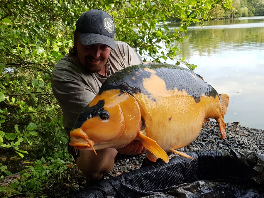 The fish lives in a lake in northern France