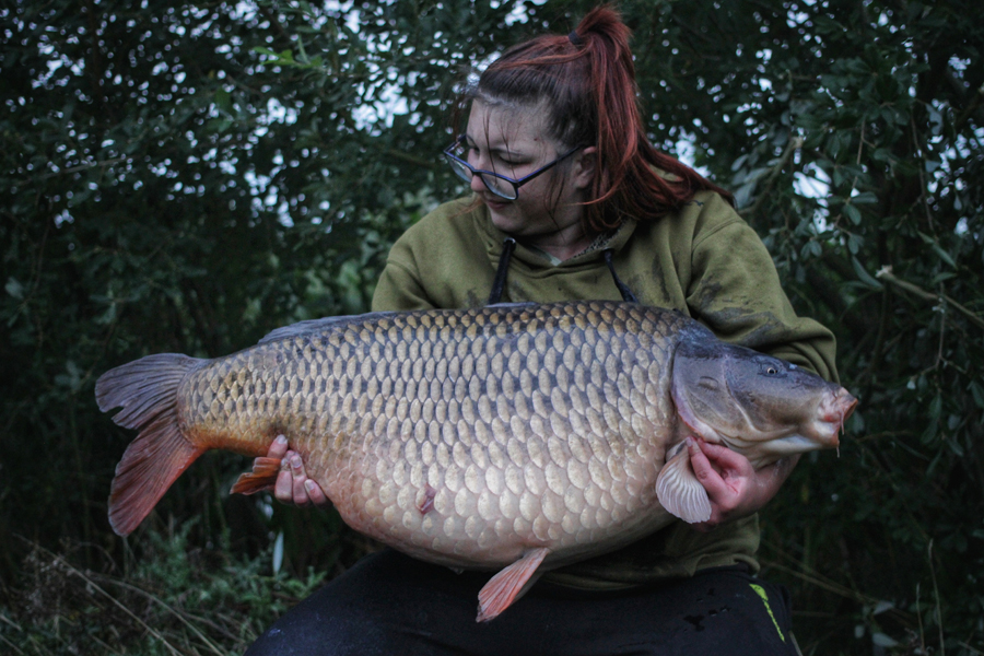 A Lincolnshire 50 on a day ticket! What a fish!