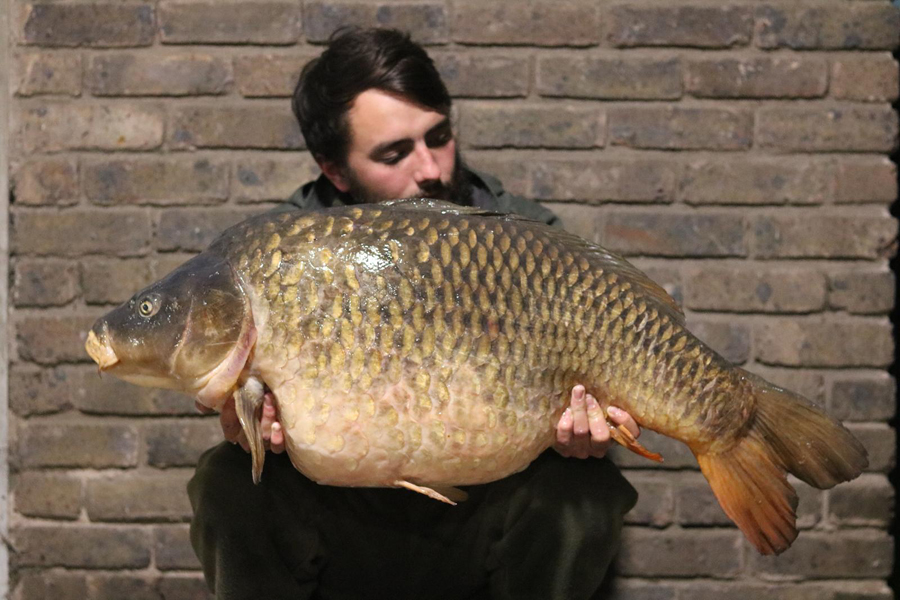41lb 14oz of hard-as-nails tidal Thames carp
