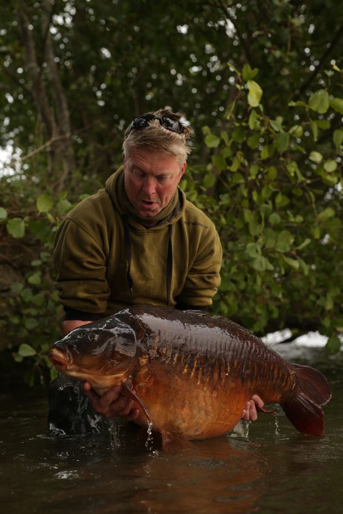 Catch of the year? Nick's 50lb 12oz Thames mirror