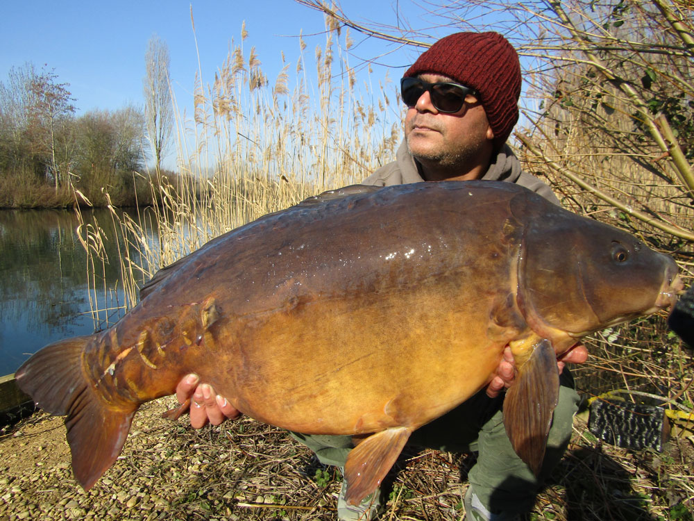 38lb of Oxlease mirror