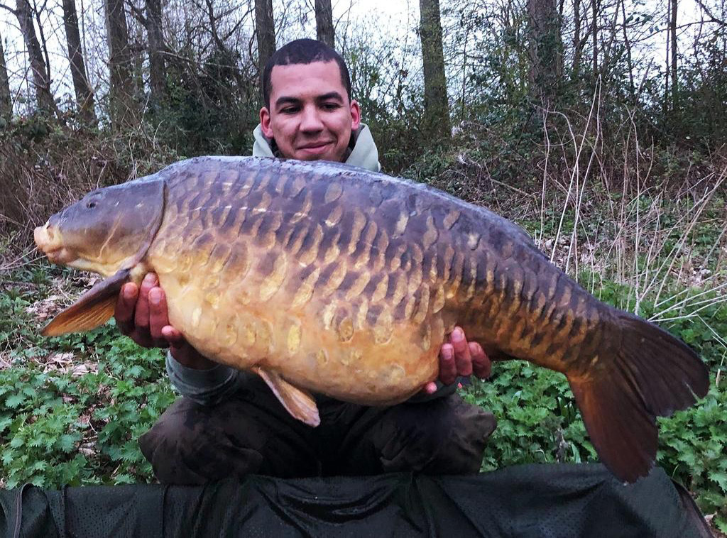The fantastic Baby Plated at 31lb