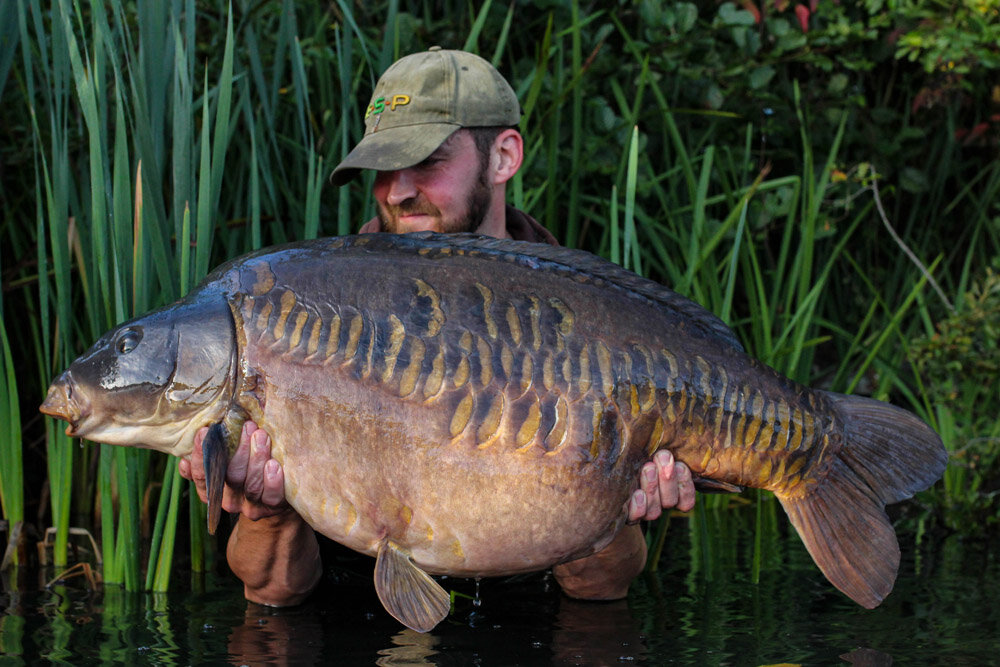 WOW! 51lb 6oz of perfection