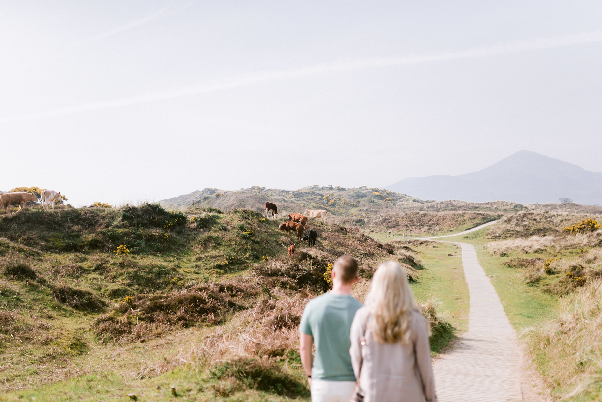 engagement photos northern ireland, Murlough National Nature Reserve photos, couple photoshoot, hello sugar photography (1).jpg