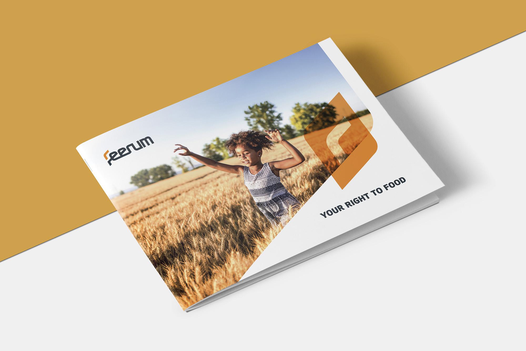 feerum folder 3.jpg