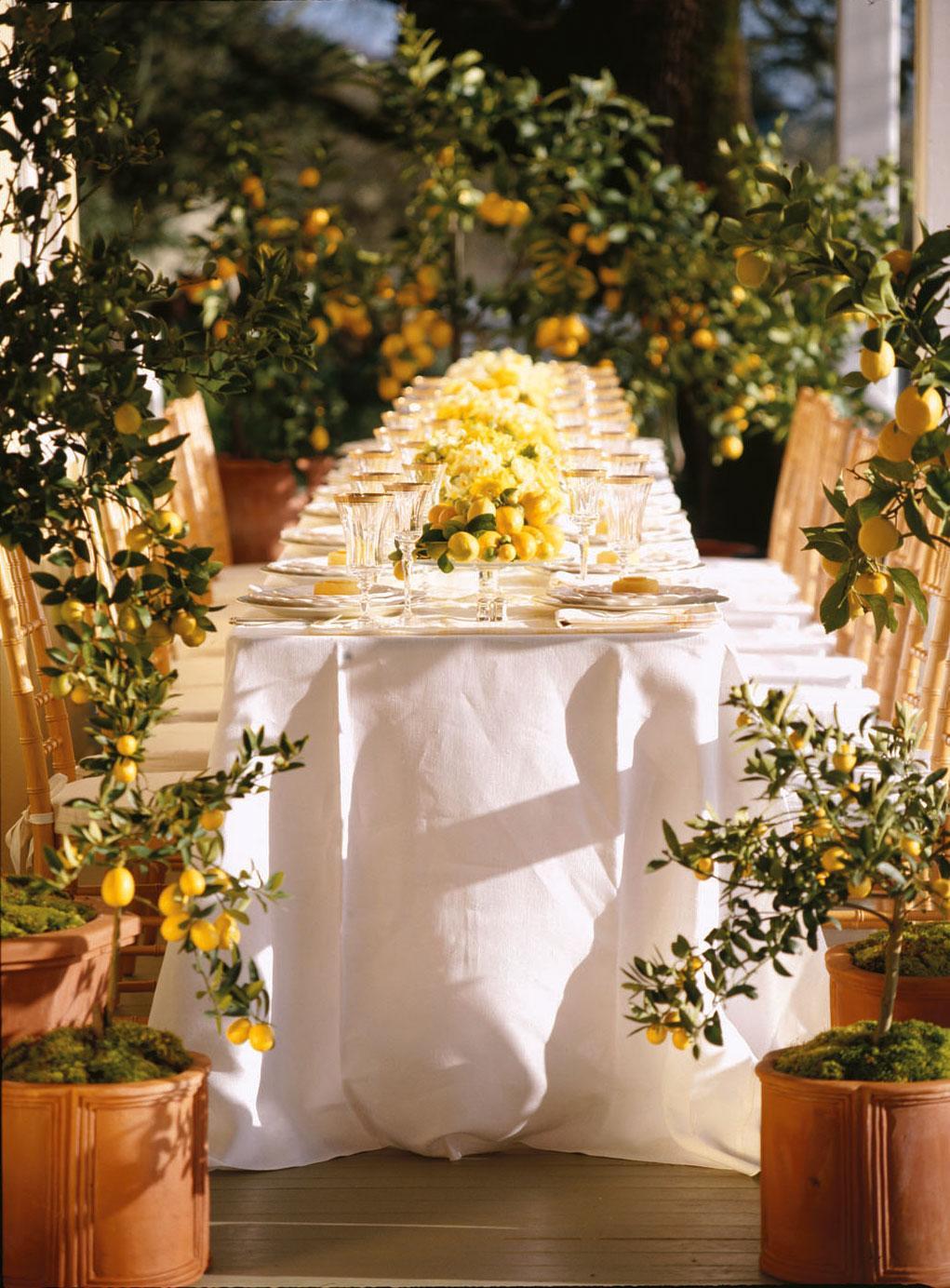 Lemon Dinner Party