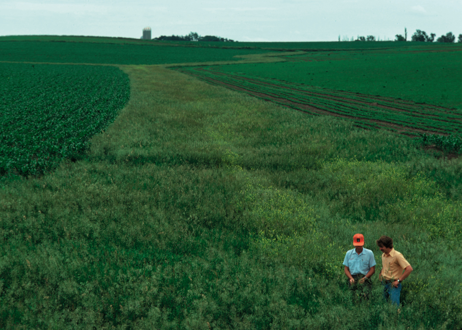 Helping to cover the cost of erosion control practices