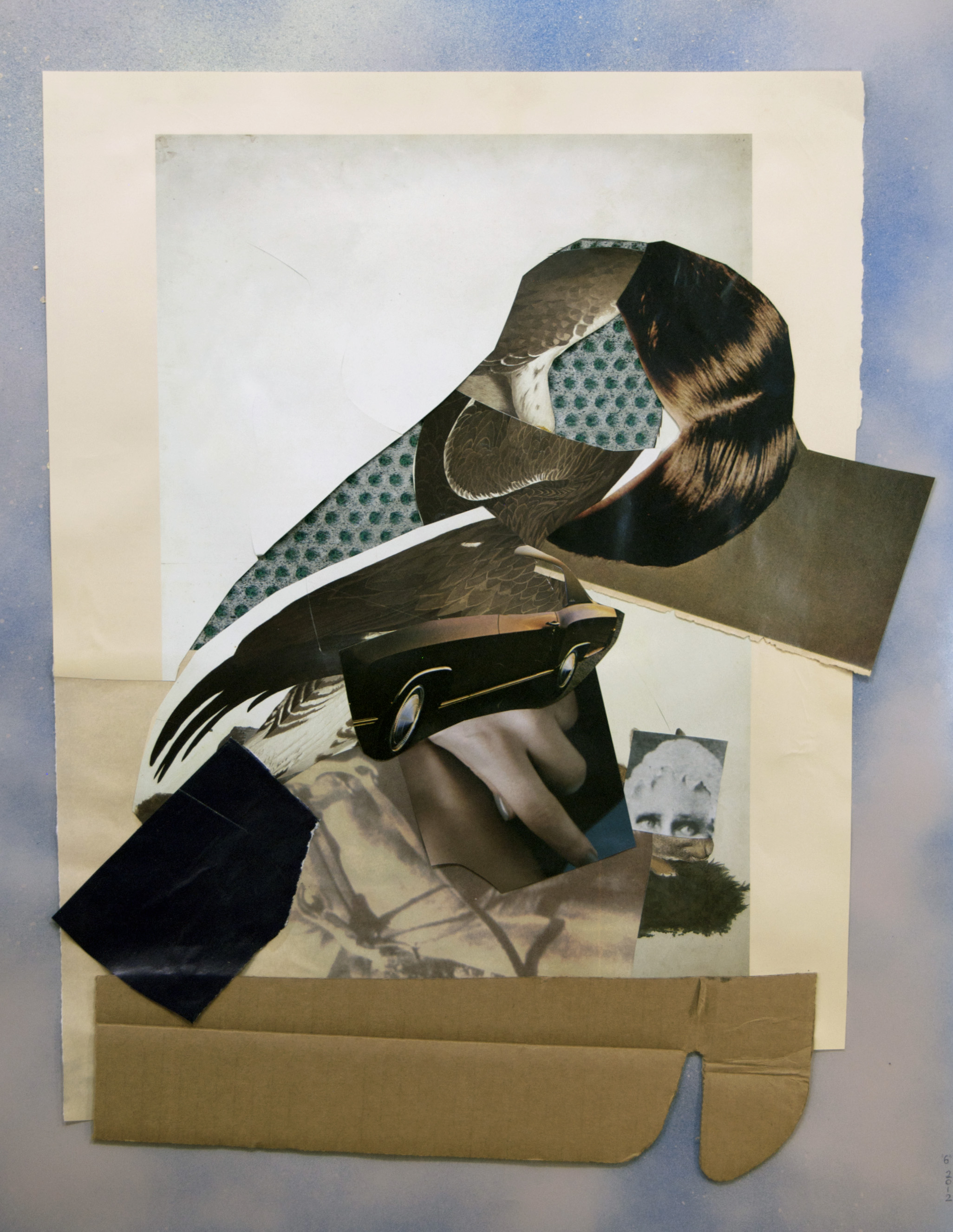 """08, Audubon"", collage, found images, cardboard, handmade paper, 15""x19"", 2012"