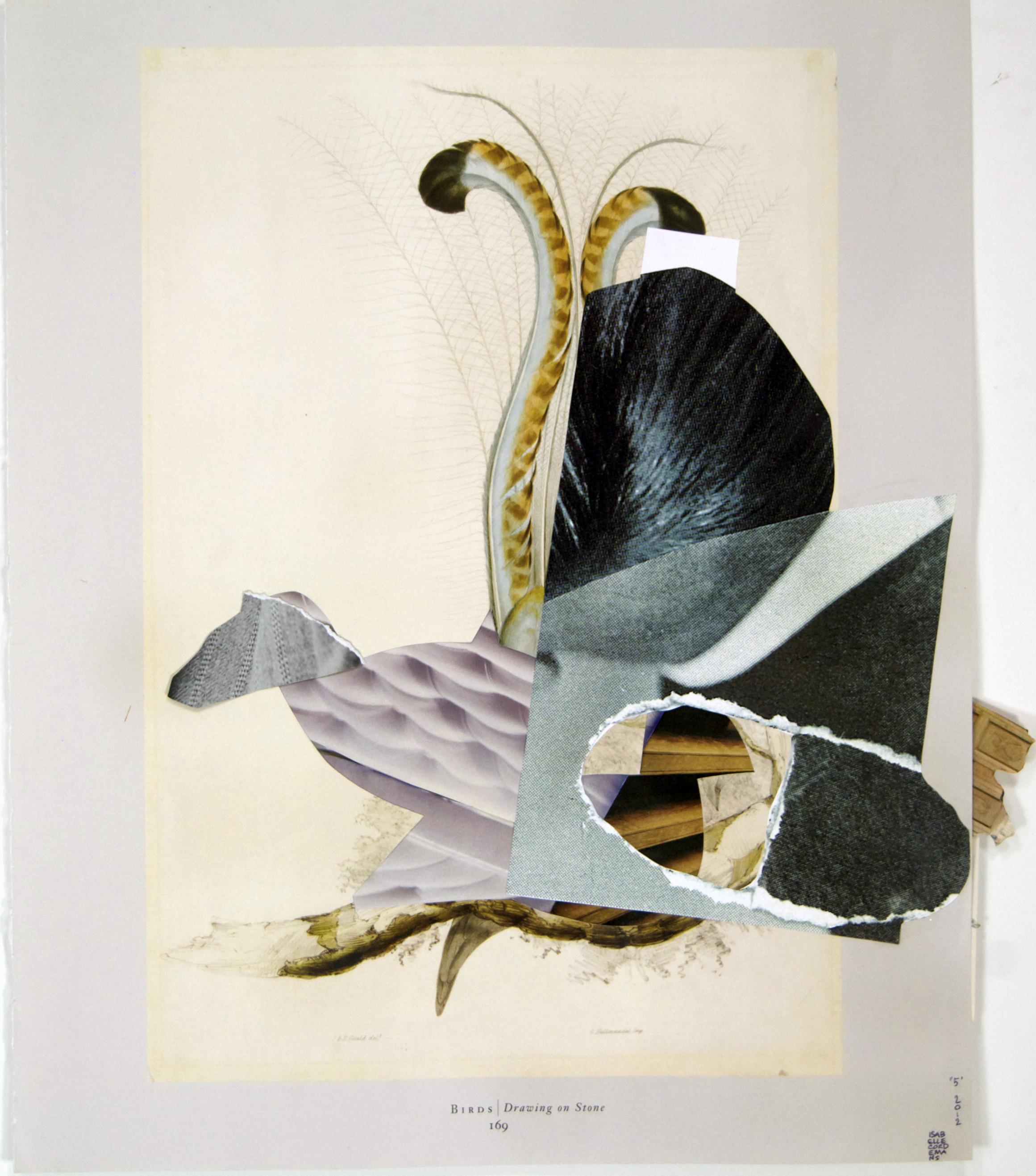 """05, Audubon"", collage, found paper, cardboard, prints, 14""x17"",2012"