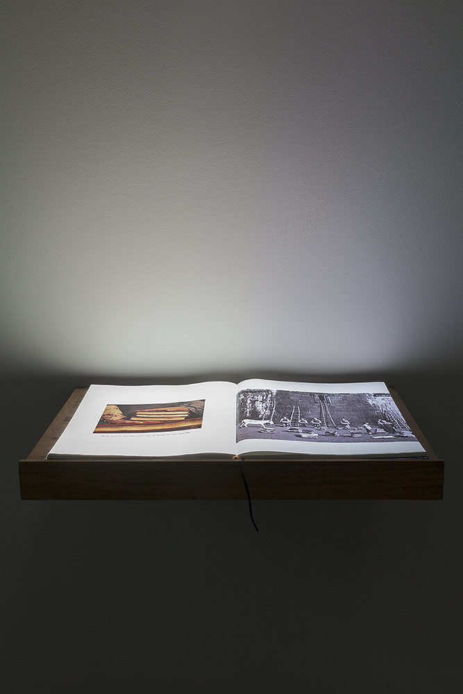 A book for a film (Sayat),  2017.  Full HD Video projection on open book. Book; 30.5 x 34 x 2.7 cm, Lectern; 65 x 39.5 x 15 cm