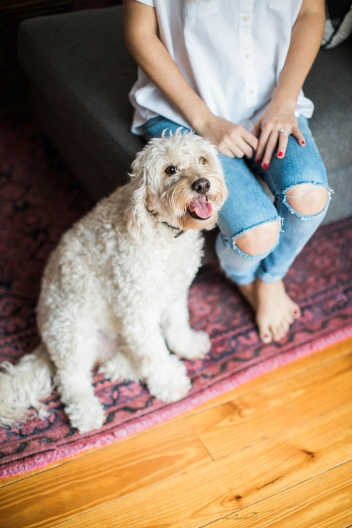 Woman's legs in distressed denim sitting on couch with white dog seated at her feet