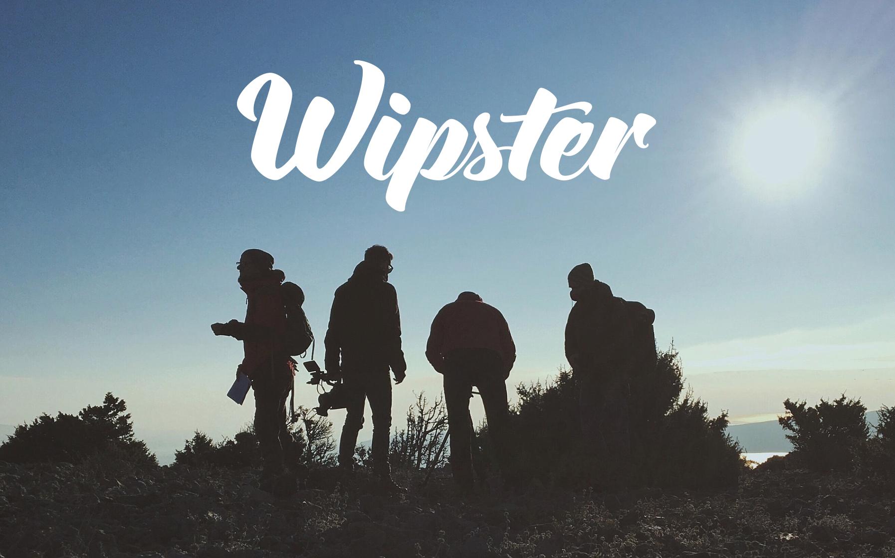 Wipster Enterprise sales- 2016/2017