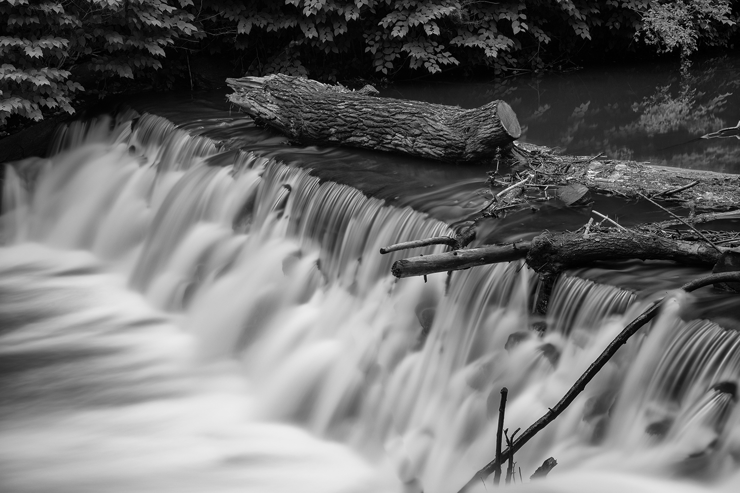 I took this image while on a Photowalk at the NY Botanical Gardens with the crew from B&H -- with help from Gabe Biederman -- my first image taken with a Neutral Density Filter.