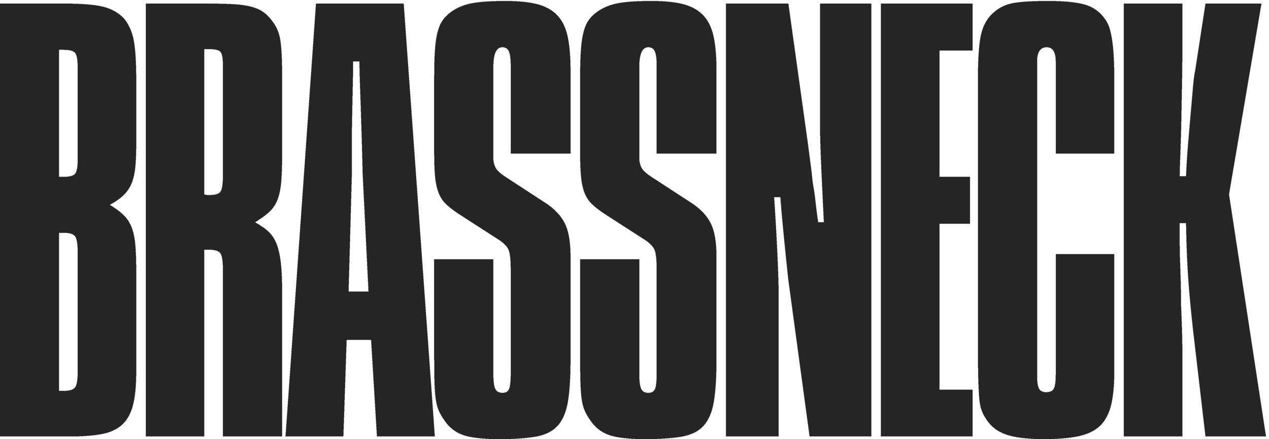 brassneck-logotypeX.jpg