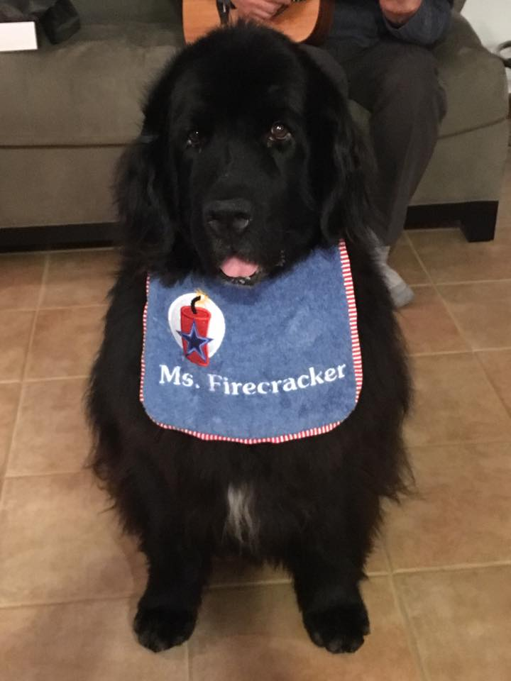 Sky in her Ms. Firecracker bib.jpg