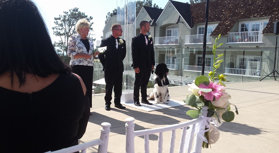 Ring Bearer waiting for Bride.jpg