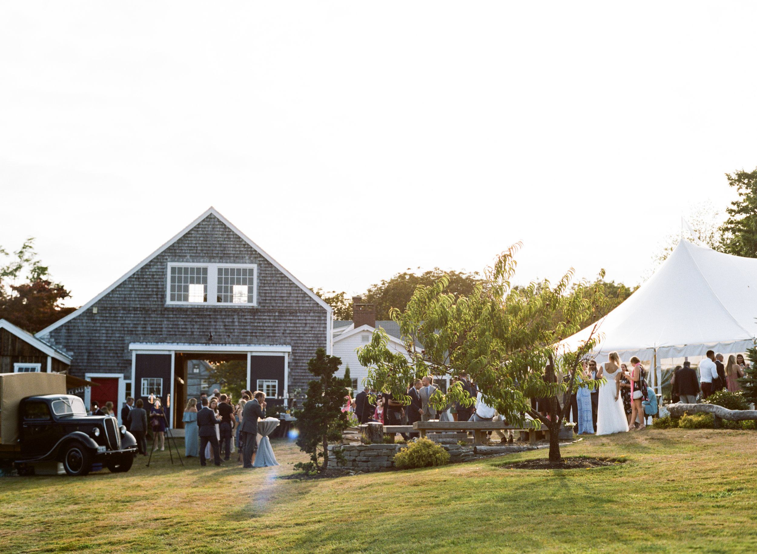 wedding reception with tent live well farm