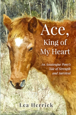 Ace, King of My Heart.jpg